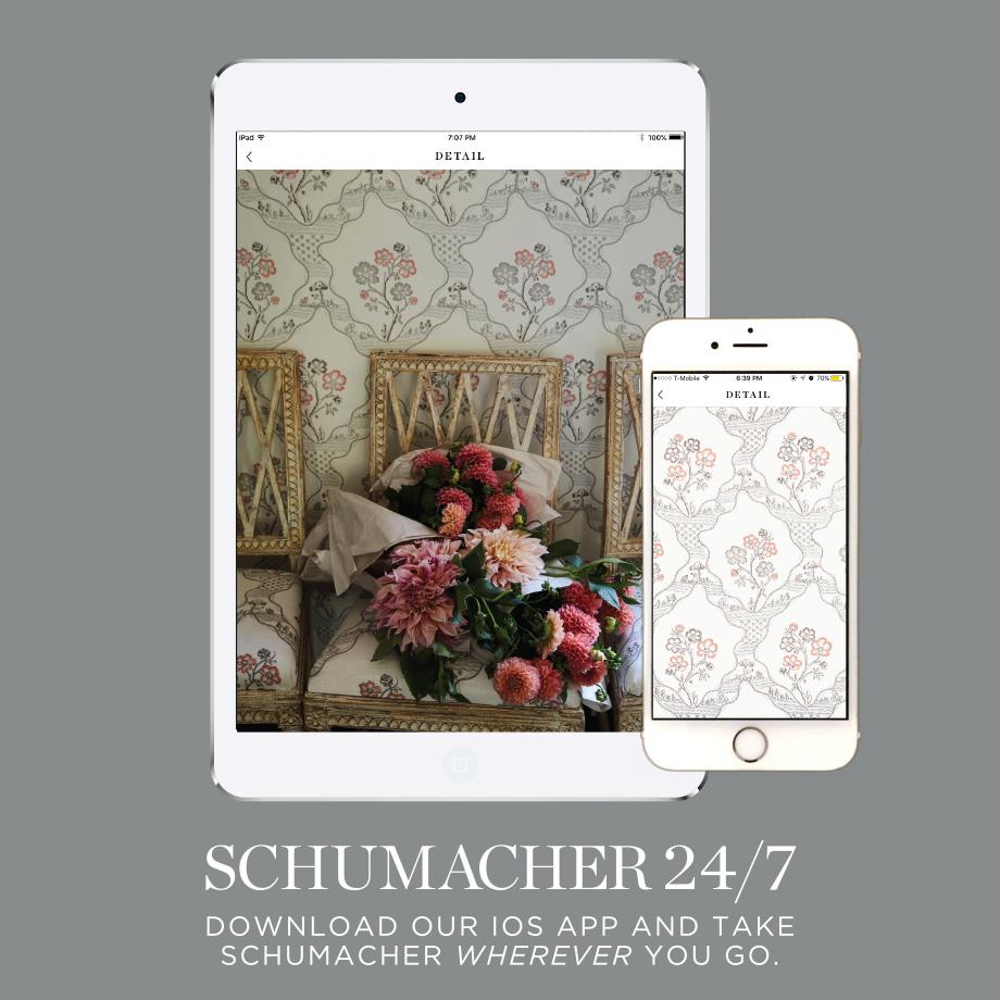 schumacher don t miss a beat